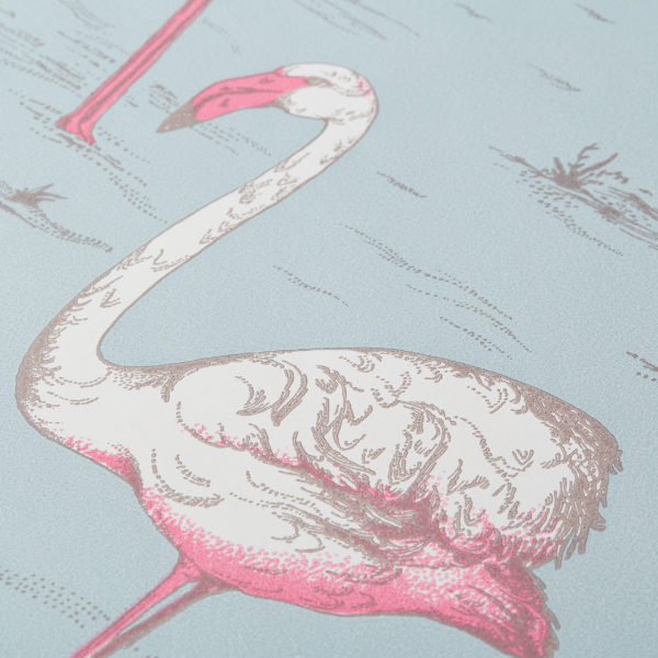 Cole & Son Flamingos / 66/6042(ロール)