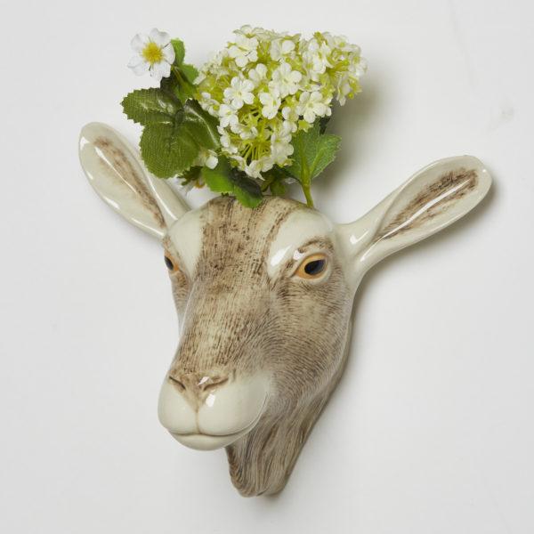 Quail WV BT goat Q734