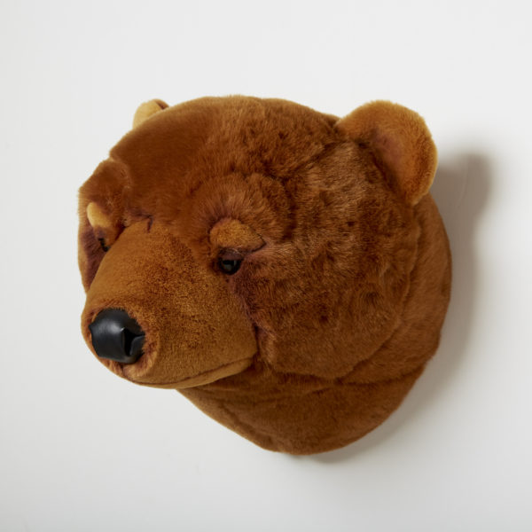 Animal Head Brown Bear
