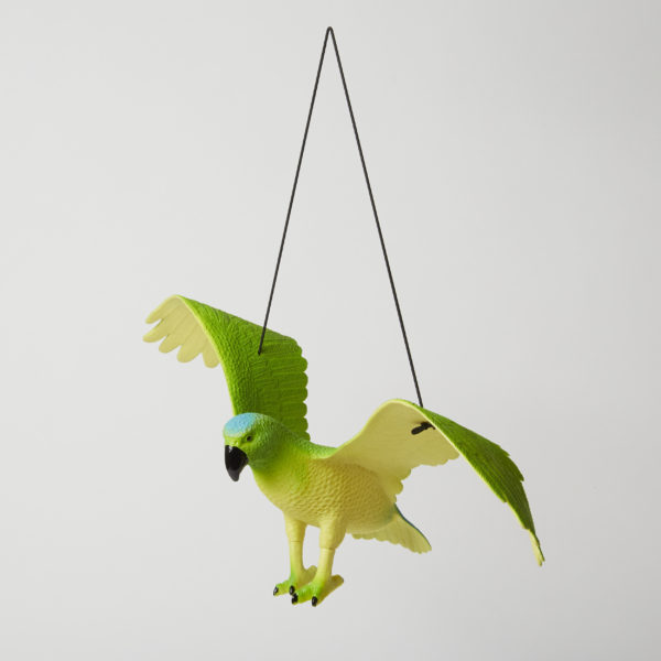Parrot with String