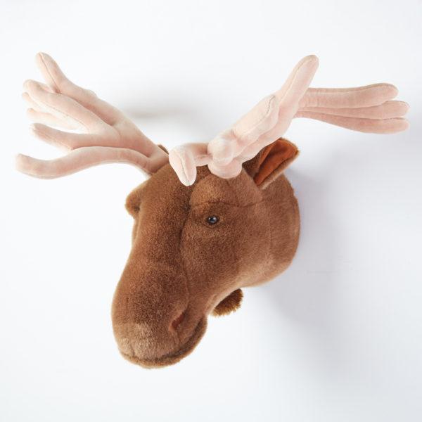 Animal Head Deer