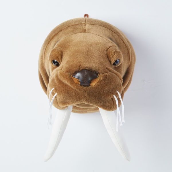 Animal Head Walrus