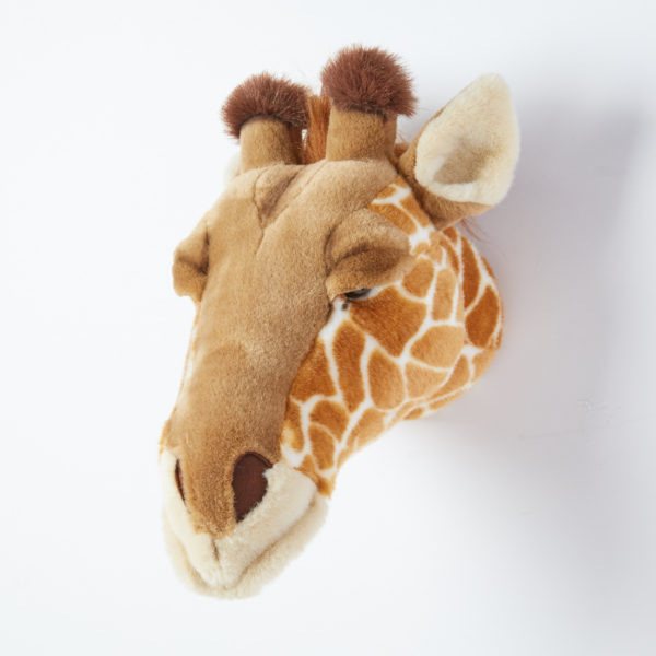 Animal Head Giraffe