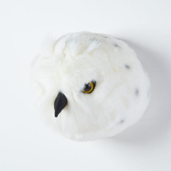 Animal Head Snow Owl