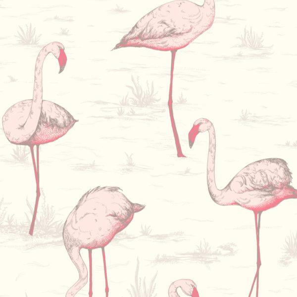Cole & Son Flamingos 95/8045-1m